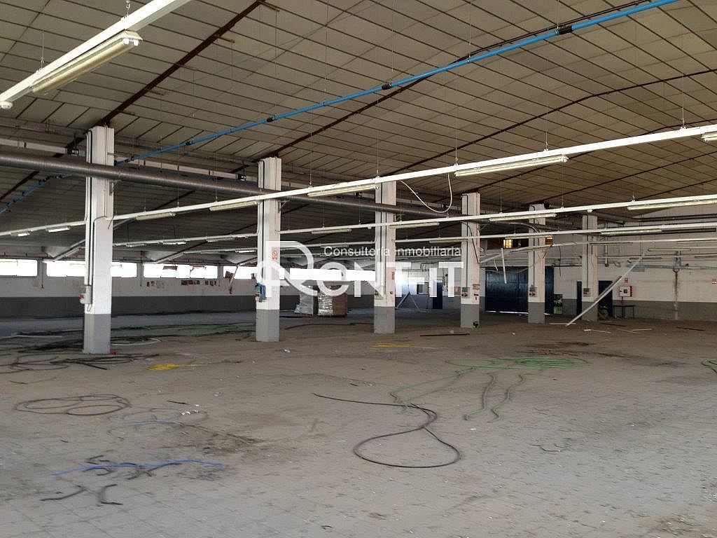 14159271.jpg - Nave industrial en alquiler en Molins de Rei - 288838927