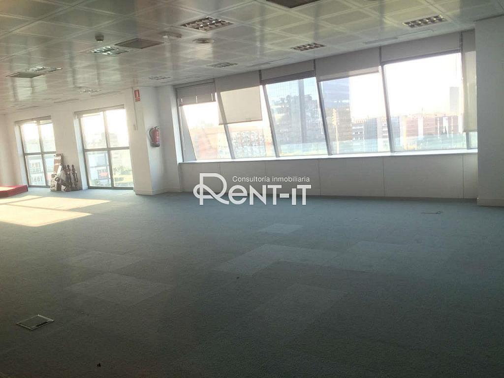 IMG_6139.JPG - Oficina en alquiler en La Bordeta en Barcelona - 288838696