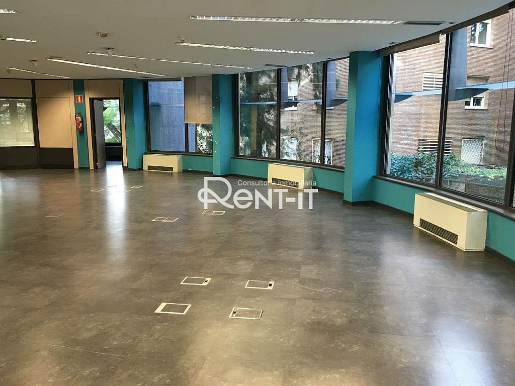 IMG_7961.JPG - Oficina en alquiler en Les Tres Torres en Barcelona - 288842056