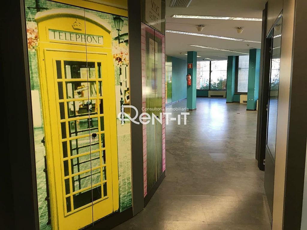 IMG_7956.JPG - Oficina en alquiler en Les Tres Torres en Barcelona - 288842065