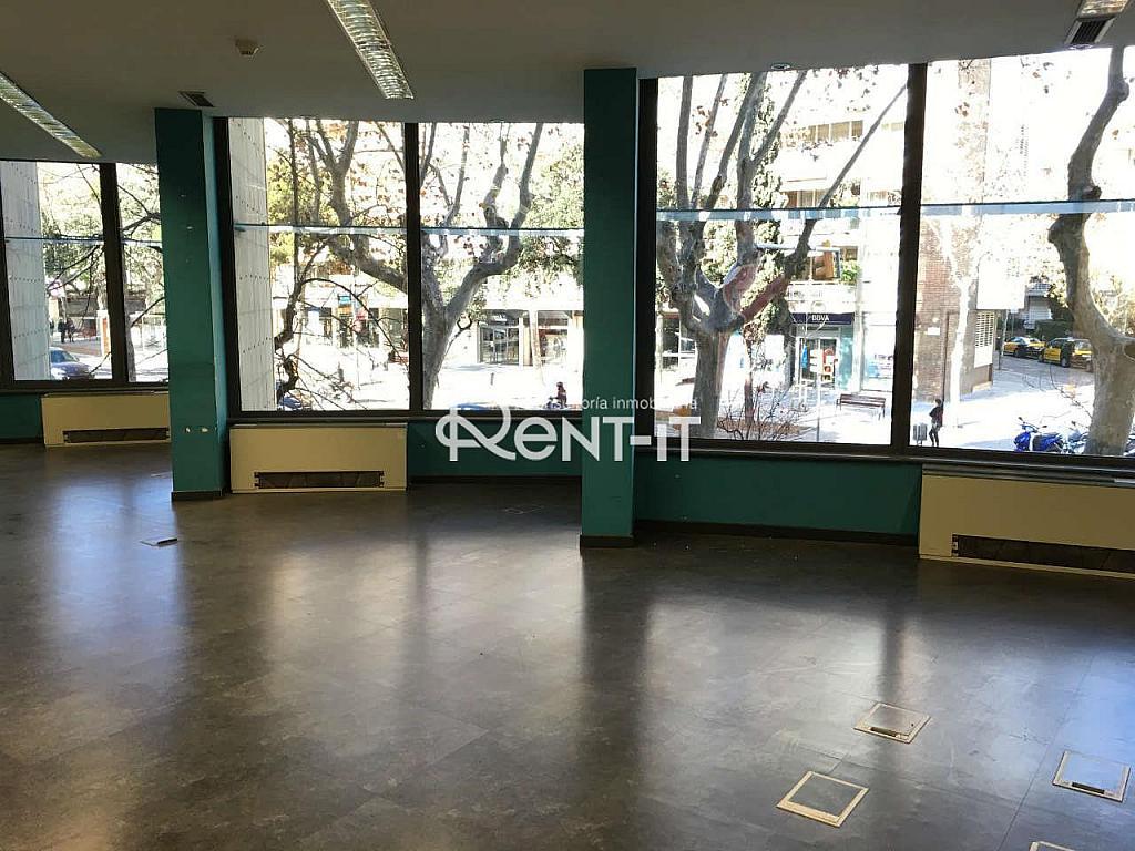 IMG_7959.JPG - Oficina en alquiler en Les Tres Torres en Barcelona - 288842074