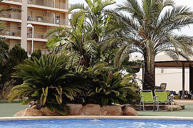 Apartamento en venta en calle Playa Levante la Fosa, Calpe/Calp - 252891175