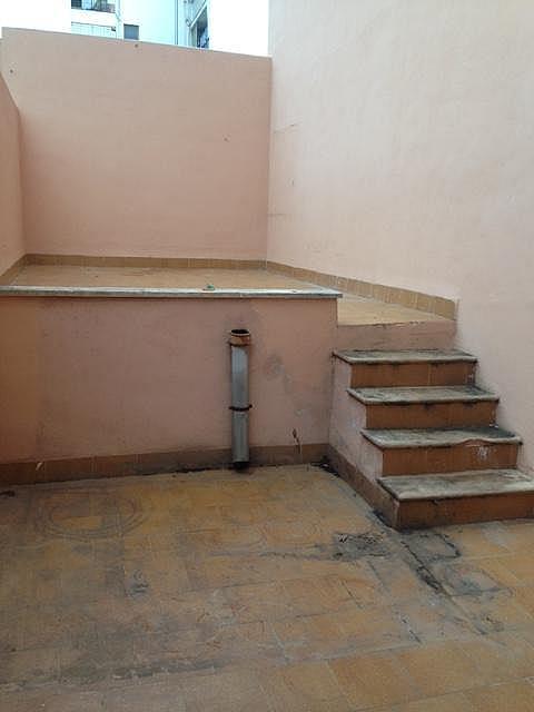 Local comercial en alquiler en calle , Plaça de Toros en Palma de Mallorca - 251939473