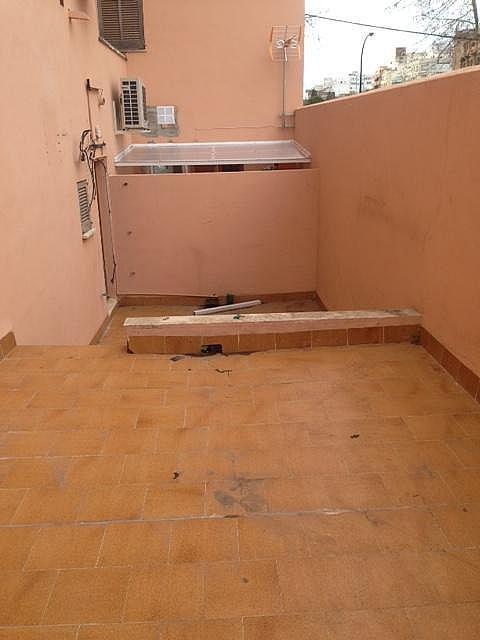 Local comercial en alquiler en calle , Plaça de Toros en Palma de Mallorca - 251939478