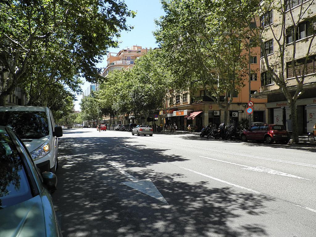 Vistas - Piso en alquiler en calle A R, Marquès de la Fontsanta en Palma de Mallorca - 293620229