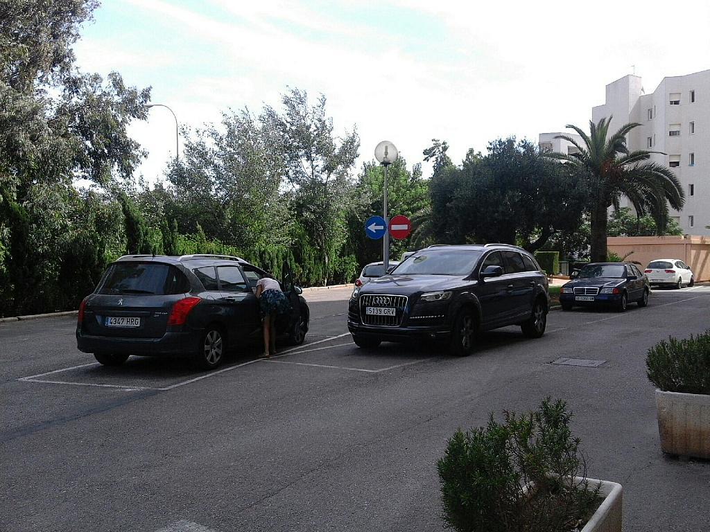 Piso en alquiler en calle , Zona portuaria en Palma de Mallorca - 307435425