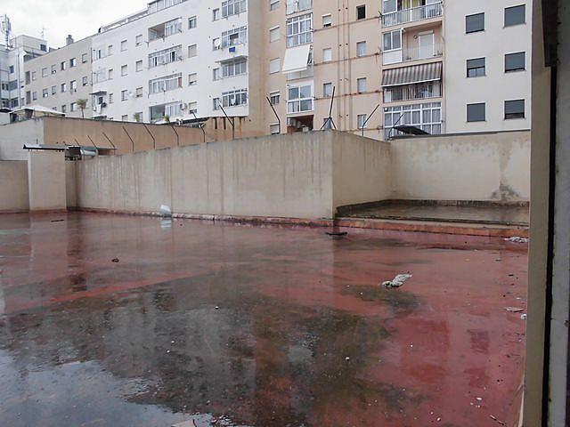 Patio - Local comercial en alquiler en calle , Cas Capiscol en Palma de Mallorca - 329588490