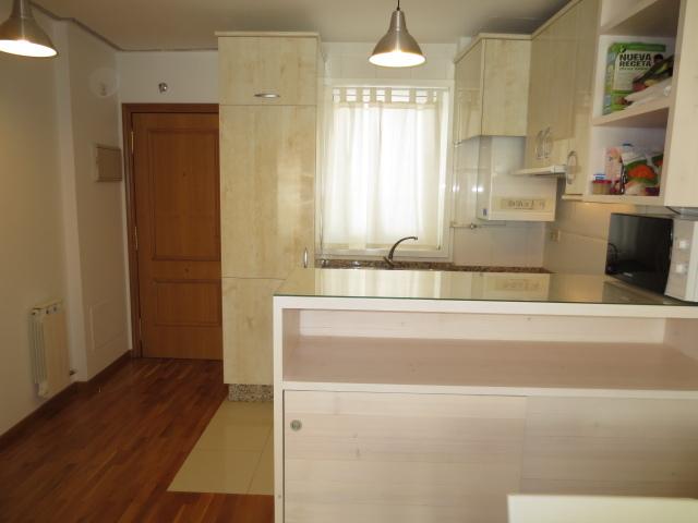 Apartamento en alquiler en calle Vereda del Polvorin, Monte Alto-Zalaeta-Atocha en Coruña (A) - 118511665