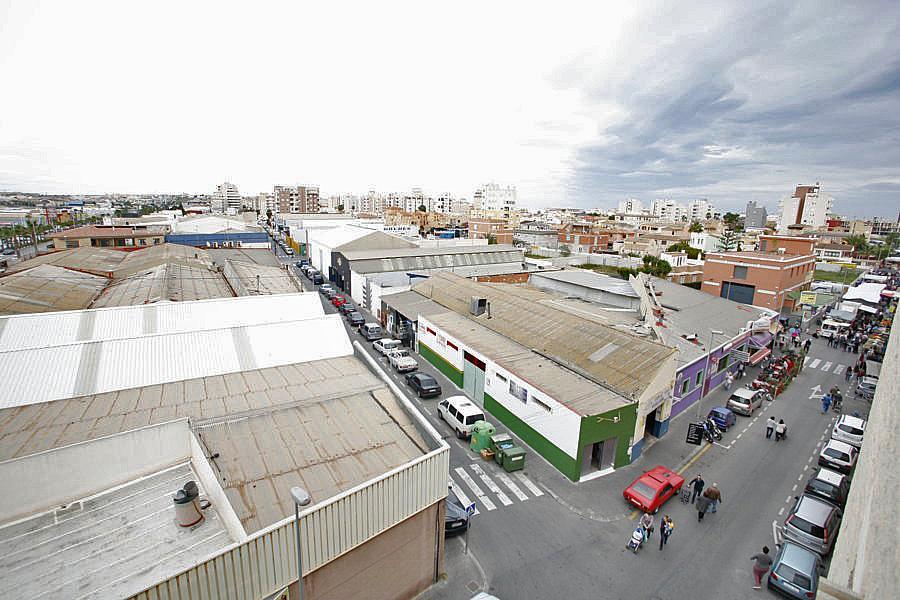 Oficina en alquiler en calle Apolo, Nueva Torrevieja - Aguas Nuevas en Torrevieja - 244593297