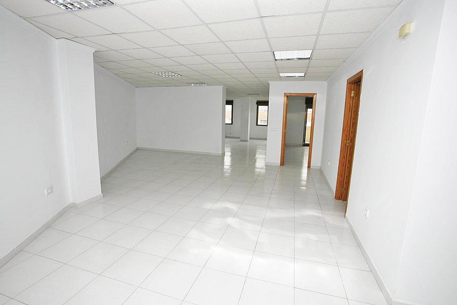 Oficina en alquiler en calle Apolo, Nueva Torrevieja - Aguas Nuevas en Torrevieja - 244593317