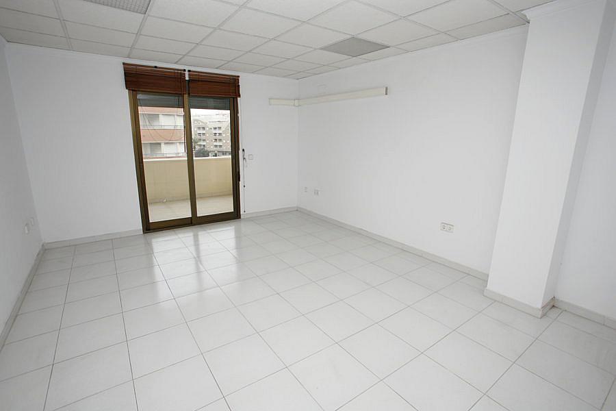 Oficina en alquiler en calle Apolo, Nueva Torrevieja - Aguas Nuevas en Torrevieja - 244593334