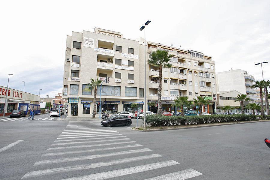 Oficina en alquiler en calle Apolo, Nueva Torrevieja - Aguas Nuevas en Torrevieja - 244593390