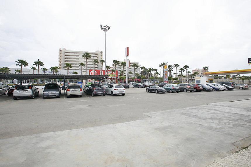 Local comercial en alquiler en calle Cortes Valencianas, Nueva Torrevieja - Aguas Nuevas en Torrevieja - 275517993