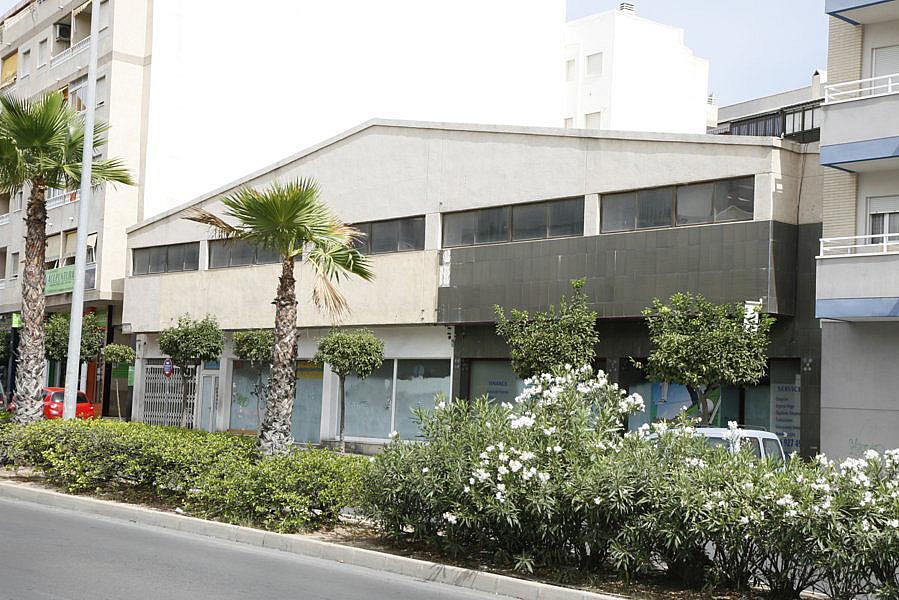 Nave industrial en alquiler en calle Apolo, Nueva Torrevieja - Aguas Nuevas en Torrevieja - 282781503