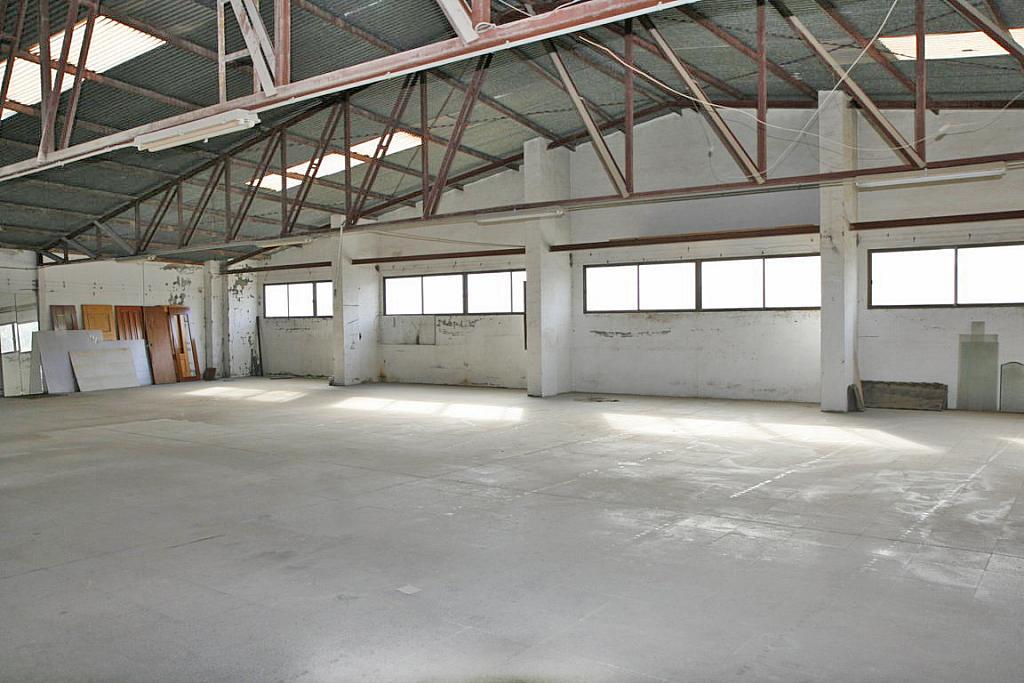 Nave industrial en alquiler en calle Apolo, Nueva Torrevieja - Aguas Nuevas en Torrevieja - 282781579