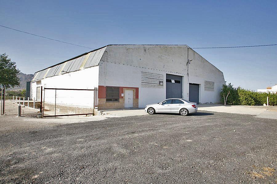 Nave industrial en alquiler en carretera Beniel, Orihuela - 285160731