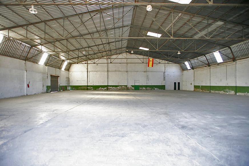 Nave industrial en alquiler en carretera Beniel, Orihuela - 285160766