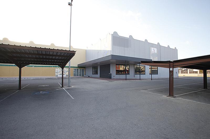 Nave industrial en alquiler en calle Cortes Valencianas, Nueva Torrevieja - Aguas Nuevas en Torrevieja - 305976240
