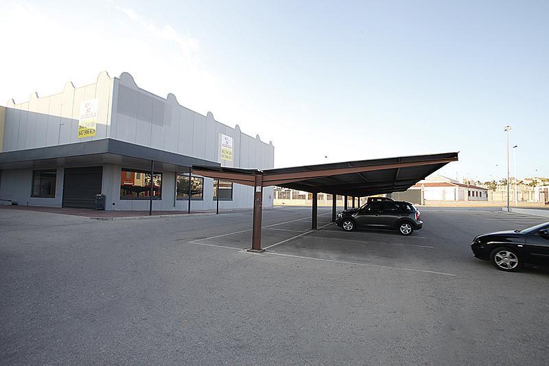 Nave industrial en alquiler en calle Cortes Valencianas, Nueva Torrevieja - Aguas Nuevas en Torrevieja - 305976242