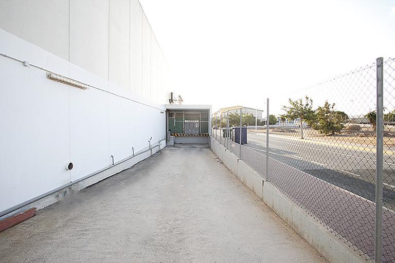 Nave industrial en alquiler en calle Cortes Valencianas, Nueva Torrevieja - Aguas Nuevas en Torrevieja - 305976244