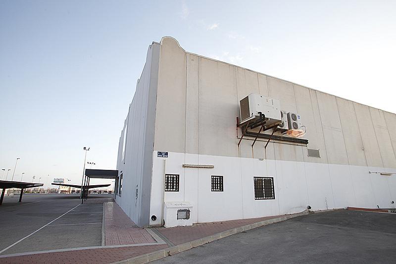 Nave industrial en alquiler en calle Cortes Valencianas, Nueva Torrevieja - Aguas Nuevas en Torrevieja - 305976275