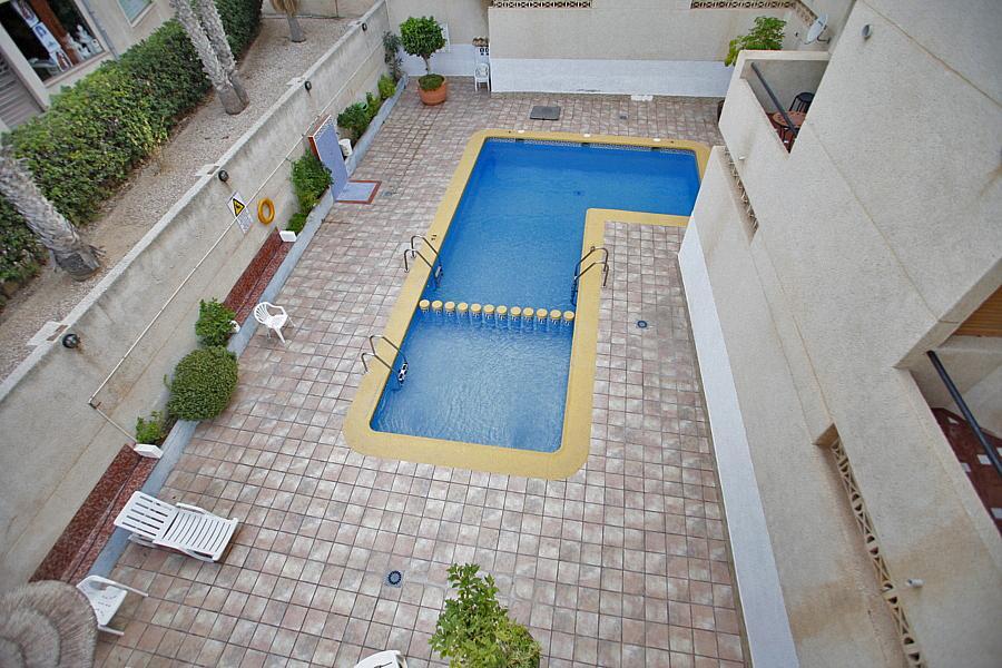 Apartamento en alquiler en calle Alfredo Nobel, Torrelamata - La Mata en Torrevieja - 324374446