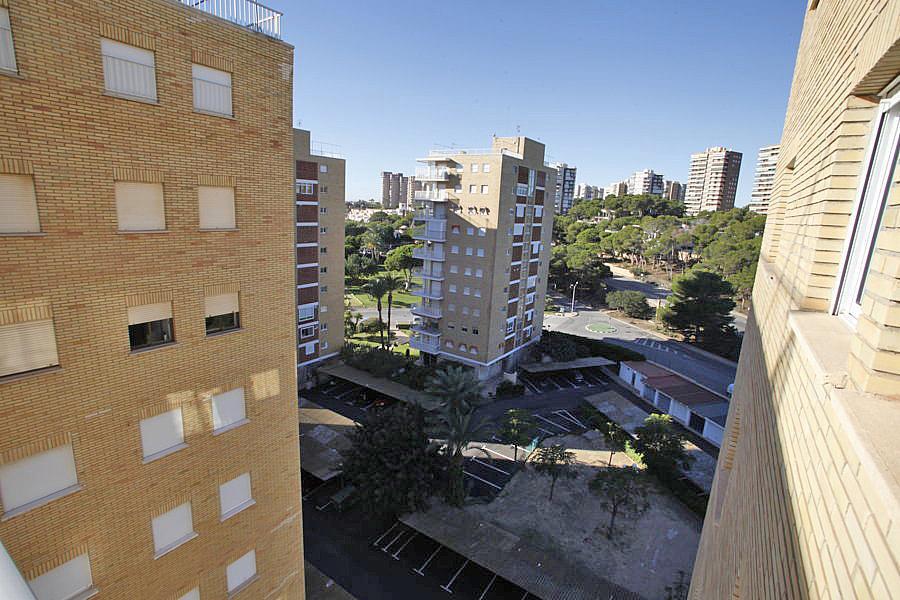 Apartamento en alquiler en ronda Ramón Campoamor, Orihuela-Costa - 350166491