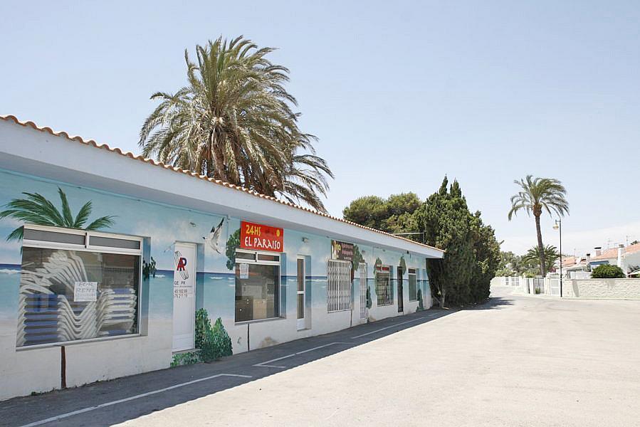Restaurante en alquiler en plaza Los Halcones, Torrevieja - 200143045