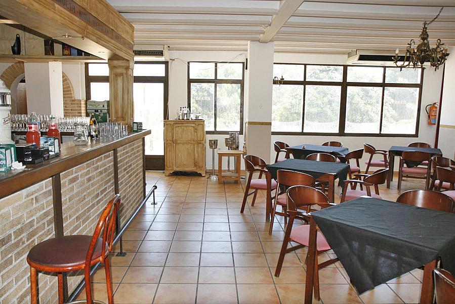 Restaurante en alquiler en plaza Los Halcones, Torrevieja - 200143055