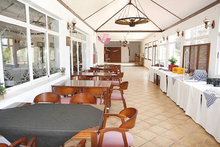Restaurante en alquiler en plaza Los Halcones, Torrevieja - 200143069