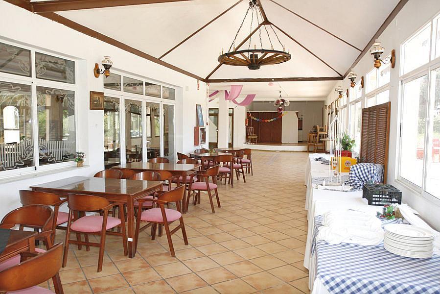 Restaurante en alquiler en plaza Los Halcones, Torrevieja - 200143071