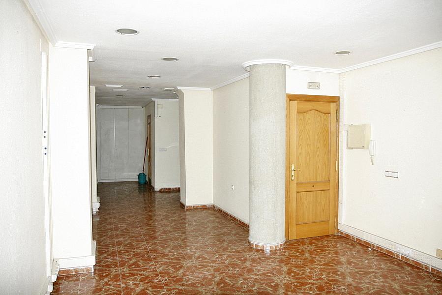 Oficina en alquiler en calle Ramón Gallud, Centro en Torrevieja - 204944304