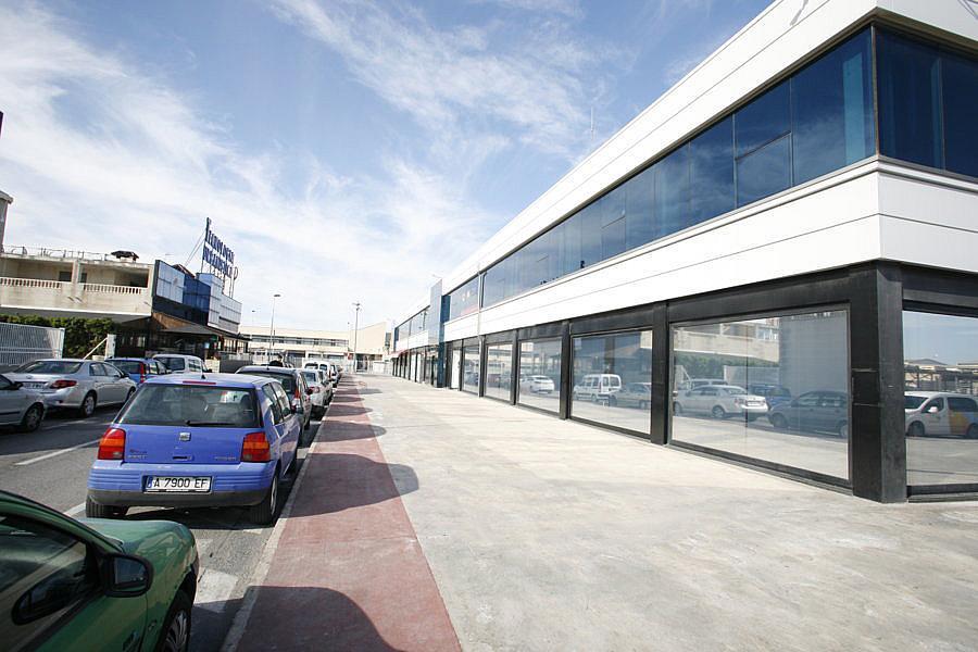 Oficina en alquiler en polígono Casa Grande, Nueva Torrevieja - Aguas Nuevas en Torrevieja - 239445964