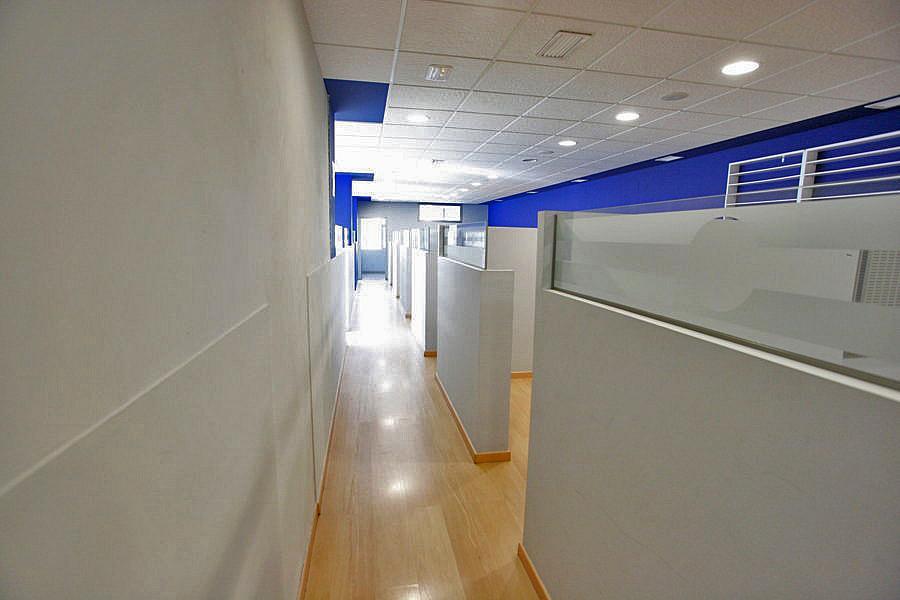 Oficina en alquiler en polígono Casa Grande, Nueva Torrevieja - Aguas Nuevas en Torrevieja - 239445987