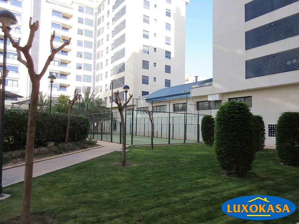 Imagen sin descripción - Piso en alquiler opción compra en Alicante/Alacant - 256535245
