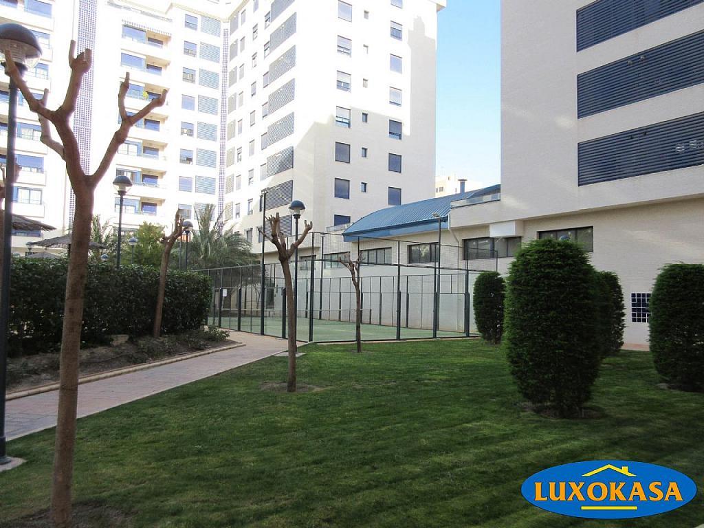 Imagen sin descripción - Piso en alquiler opción compra en Alicante/Alacant - 256535257