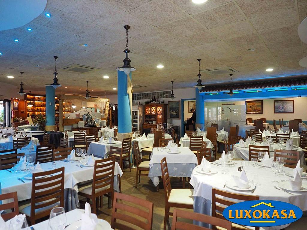 Imagen sin descripción - Local comercial en alquiler en Arenales del Sol, Los - 276927995
