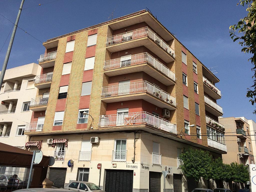 IMAGEN20044.JPG - Apartamento en venta en calle Medico a Pavia Aspe, Aspe - 237127325