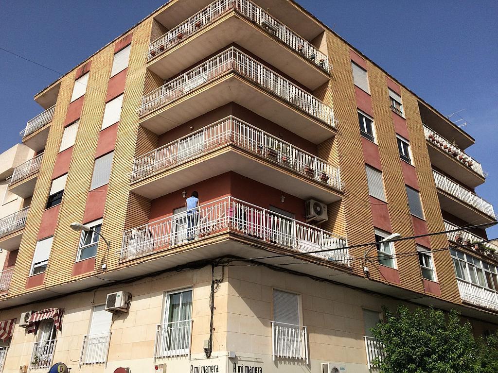 IMAGEN20040.JPG - Apartamento en venta en calle Medico a Pavia Aspe, Aspe - 237127340