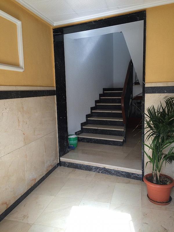 IMAGEN20037.JPG - Apartamento en venta en calle Medico a Pavia Aspe, Aspe - 237127343