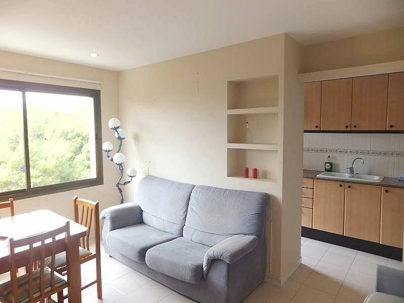 Foto - Apartamento en venta en calle Puerto, Puerto en Sant Carles de la Ràpita - 300596914
