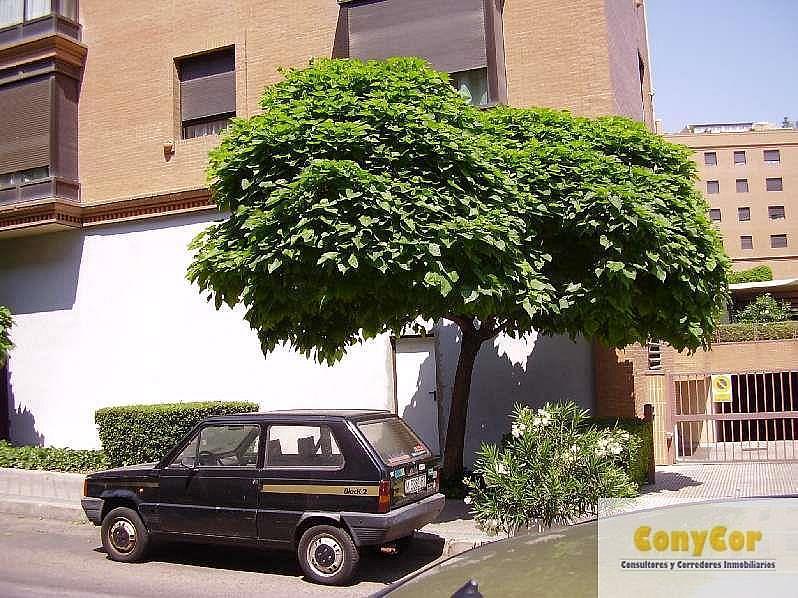 Foto1 - Local comercial en alquiler en Piovera-Conde Orgaz en Madrid - 221615174