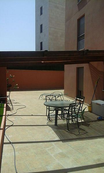 Foto - Piso en alquiler en calle La Minilla, La Minilla en Palmas de Gran Canaria(Las) - 322270575