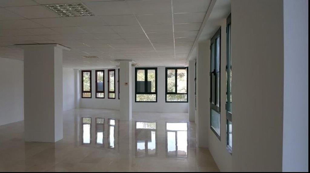 Oficina en alquiler en Penya-Roja en Valencia - 393358130