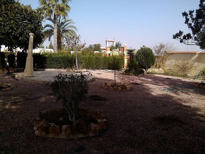 Foto - Chalet en alquiler en calle Valverde, Valverde en Elche/Elx - 324185669