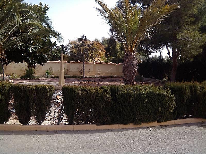Foto - Chalet en alquiler en calle Valverde, Valverde en Elche/Elx - 324185672