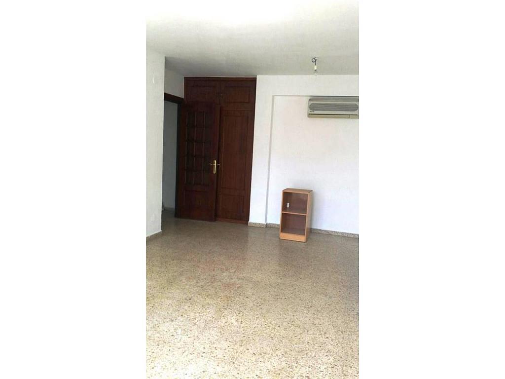 Piso en alquiler en Perchel Norte-La Trinidad en Málaga - 335925131