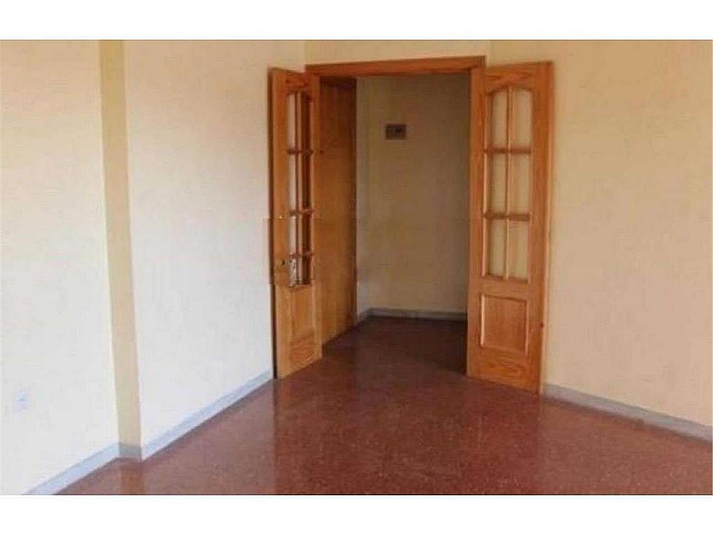 Piso en alquiler en El Ejido-La Merced-La Victoria en Málaga - 330602603