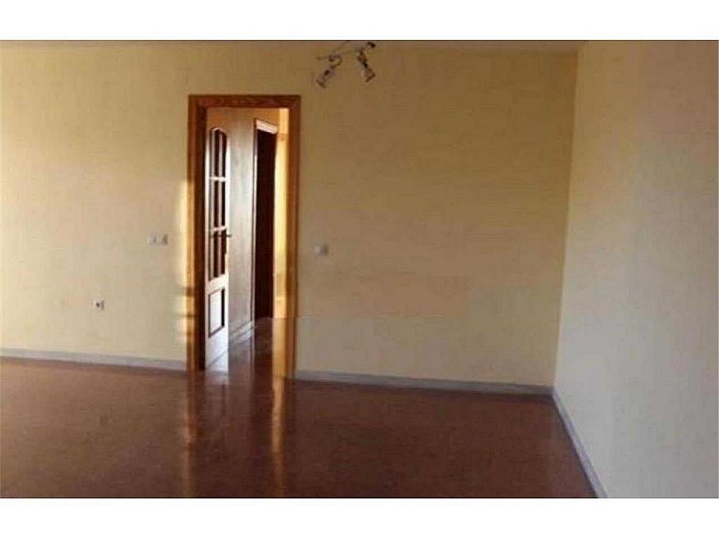 Piso en alquiler en El Ejido-La Merced-La Victoria en Málaga - 330602606