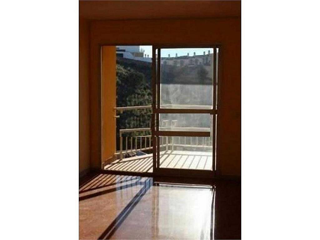 Piso en alquiler en El Ejido-La Merced-La Victoria en Málaga - 330602609